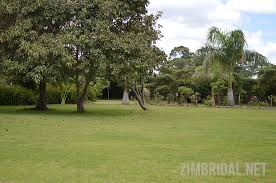 ebenezer palm tree gardens a harare based wedding and functions venue that we have been following for several years now has just announced some wedding