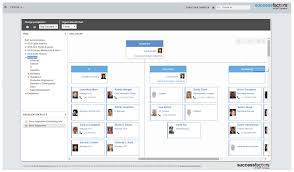 Org Manager Web For Successfactors Org Chart Structure