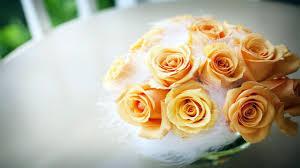 yellow rose for ipad 693