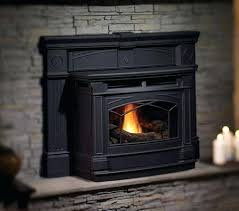 Wood FireplacesPellet Stove Fireplace Insert