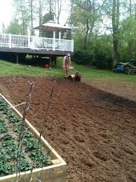 when you plant your rows make sure they are running east to west plant your tallest growing plants on the north end of the garden and the shorter growing