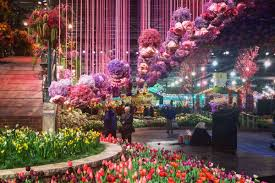 the philadelphia flower show in 18 magical instagram photos