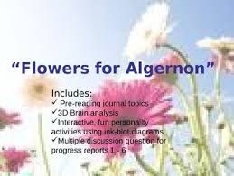 best flowers for algernon images flowers for  flowers for algernon power point