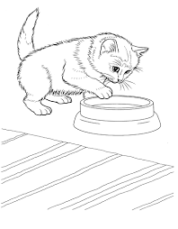 Free Printable Kitten Coloring Pages For Kids Best With Cute