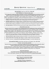 Cfo Resume Template Inspiration Cfo Resumes Professional Cfo Resume Templates Resume Sample Best