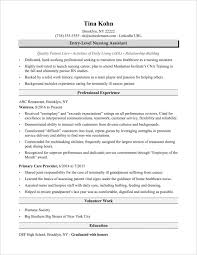 Cv Template For Nursing Assistant Resume Resume Examples