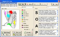 Therapist Forms - Soap Note Example