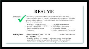 Sample Summary Statement Resume Example Summary For Resume Example Of A Resume Summary Statement