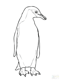 Penguin Adult Coloring Pages Interesantecosmeticeinfo