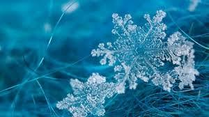 snowflake wallpaper. Modren Wallpaper Preview Wallpaper Snowflake Grass Surface Frost Form On Snowflake Wallpaper P