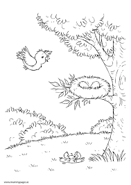 Small Picture Spring scene with tree and birds nest Colouring MummyPages