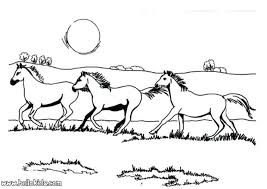 Horse Coloring Pages Coloring Pages Wild Horse Horse Show Jumping