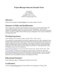 Resume Objective Statement Project Manager Resume For Study