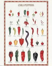 Pepper Level Chart What Is Scoville Level For An Ancho Chili Chili Peppers