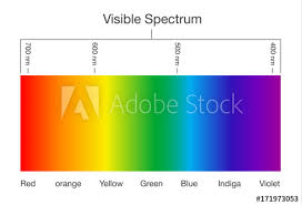 Chart Of Visible Spectrum Color Illustration About Human