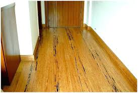 best flooring for pets. Best Flooring For Dogs Gorgeous Bamboo Floors And Bathrooms . Pets