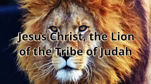 <b>Jesus</b> Christ, the <b>Lion of</b> the Tribe of Judah - Faithlife Sermons