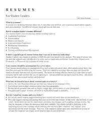 Sample Team Leader Resume.