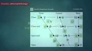 This ipa keyboard allows you to type phonetic transcriptions of words in all languages. Articulatory Phonetics Introduction To International Phonetic Alphabet Youtube