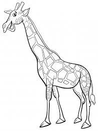Libro Da Colorare Giraffa Animali Personaggio Dei Cartoni Animati