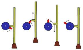 Rotational To Linear Motion Halloween Motion Rotary