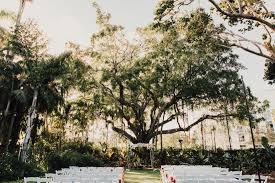 miami beach botanical gardens wedding elopement photography destination travel adventure wedding elopement photographer grapher serving