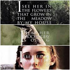 Hunger Games Quotes Interesting Hunger Games Quotes➶ Rarity Inspired