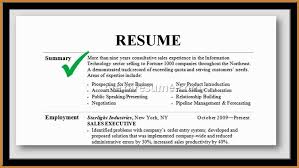 Resume Template Example Of Summary For Resume Free Career Resume Mesmerizing Professional Summary On A Resume Examples