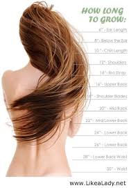 Hair Growth Length Chart Hair Growth Calculator Tool Hair Curly Hair Styles