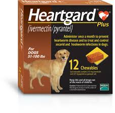 Protect Your Dog With Heartgard Plus The 1 Choice Of Vets