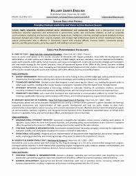 Logistics Analyst Resume Sample Sample Program Analyst Resume Luxury Operations Analyst Resume 24