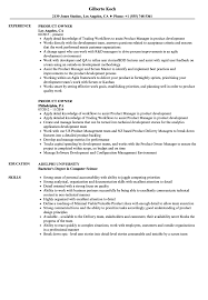 Agile Product Owner Resume Examples Product Owner Resume Samples Velvet Jobs 7