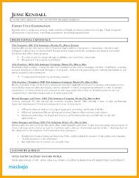 Resume Title Examples Inspiration Resume Title Examples For Entry Level Resume