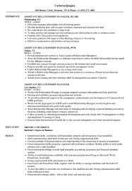 Assistant Relationship Manager Resume Samples Velvet Jobs