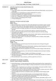 Online Sales Manager Resume Samples Velvet Jobs Professional S Sevte