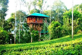 Dream Catcher Kerala Amazing DREAM CATCHER PLANTATION RESORT Munnar Kerala Hotel Reviews