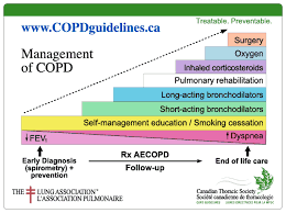 Copd Guidelines Chart Cts Copd Guidline British Columbia Respiratory Therapy