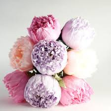 Paper Flower Stems Best Paper Flowers Stems Products On Wanelo