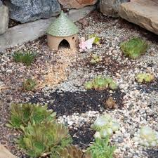 outdoor succulent garden with cold