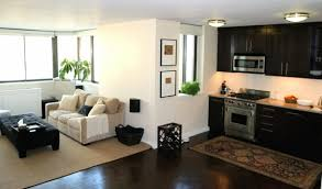Chic Apartment Setup Ideas One Room Apartment Set Up Great And Adorable Decorating One Bedroom Apartment Set