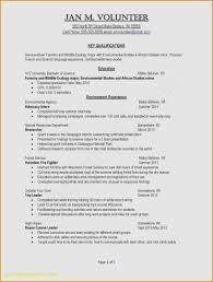 Job Resume Template College Student Kizi Gamesme