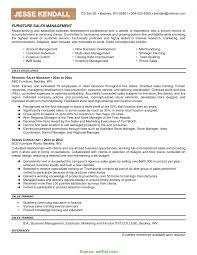 Nice Digital Asset Manager Resume Images Entry Level Resume