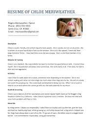 My Dog My Friend Journal