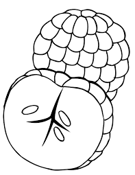 Small Picture Stunning Fruit Coloring Pages Toddlers Contemporary Printable