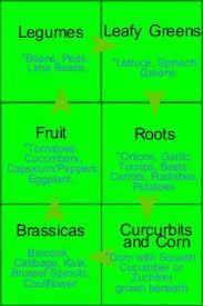 Crop Rotation Chart Vegetable Gardening 35 Best Crop Rotation Images In 2019 Crop Rotation