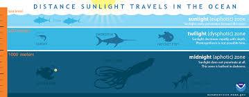 Light penetration water depth