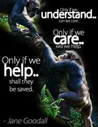 Jane Goodall Quotes Amazing Jane Goodall Quotes Sayings 48 Quotations