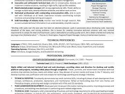 Ui Developer Resume Resume Cv Cover Letter