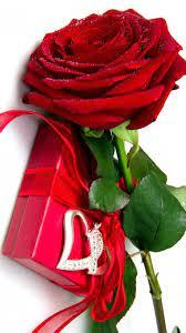 Red Rose Box Wallpaper Iphone ...