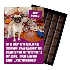 pug funny birthday gift for dog lover or owner 85 gram boxed chocolate for man or
